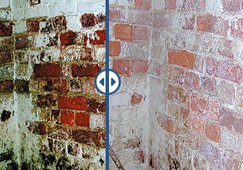 Mauerwerktrockenlegung - Feuchte Wände im Keller oder Haus trocken legen mit Aquadry